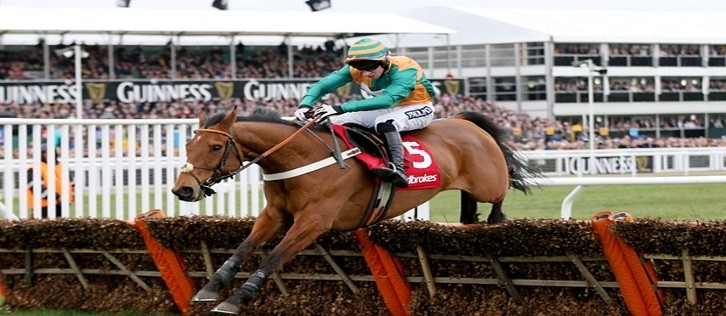 Ladbrokes curtails sponsorship of Cheltenham World Hurdle