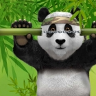 Ready to Become Royal Panda's roulette champion, win €10k