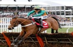Ladbrokes curtails sponsorship of Cheltenham World Hurdle