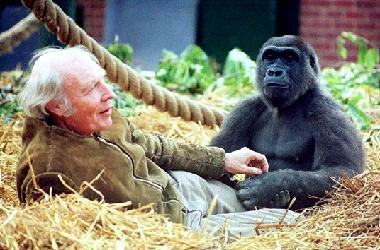 aspinall-john-gorilla  Lord Lucan: A Gambler's Life aspinall john gorilla